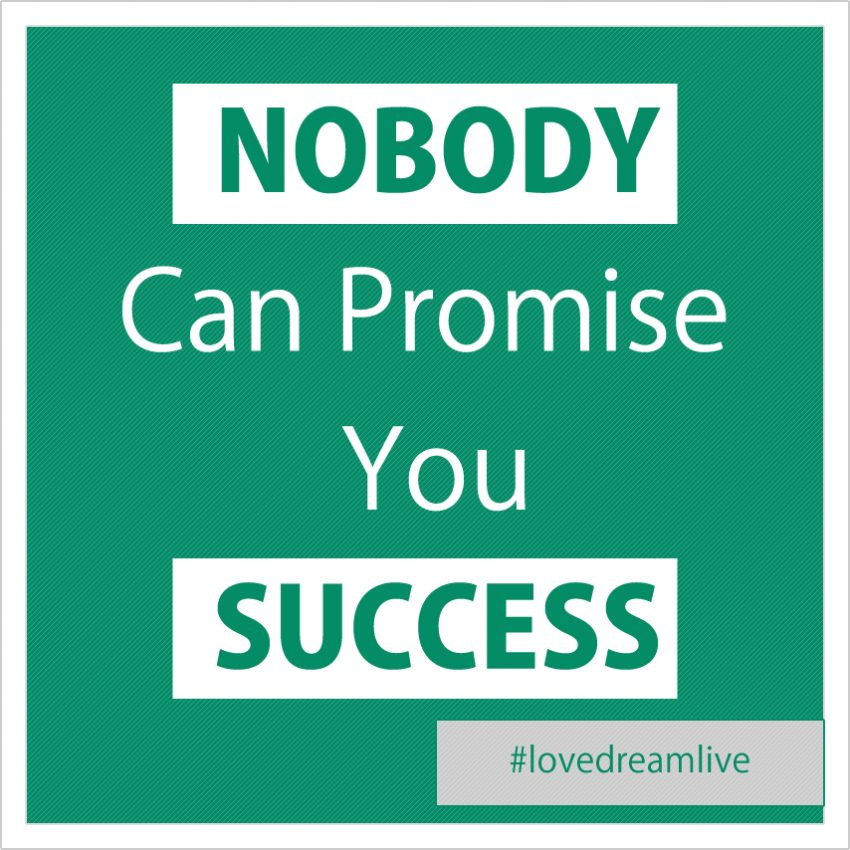 nobody-can-promise-success